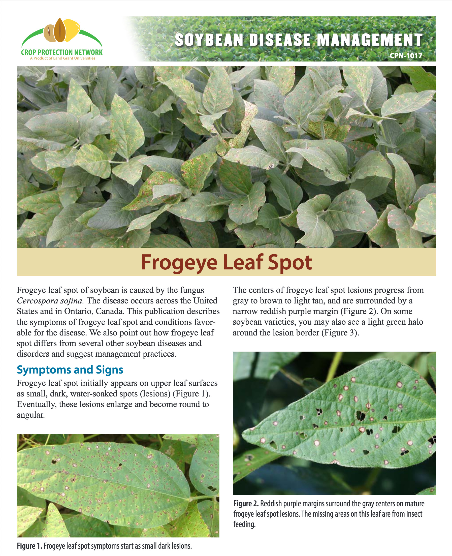 Frogeye leaf spot publication
